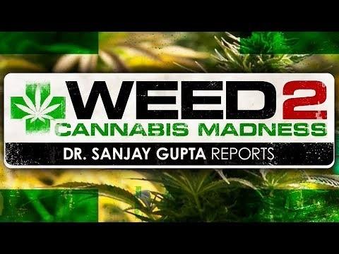 WEED 2 – Cannabis Madness – Dr. Sanjay Gupta Reports (Full HD 1080p – 2014 CNN Documentary)